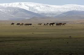 Nelle steppe di Gengis Khan