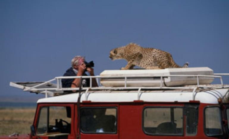 Cosa portare durante un safari