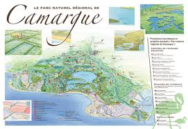 La Camargue, una meraviglia della Provenza
