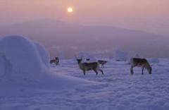 Il clima in Finlandia