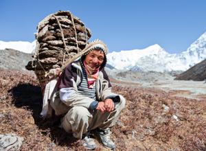sherpa porter