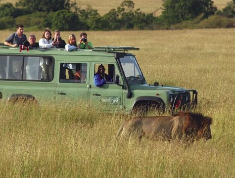 Quanto costa safari in Kenya