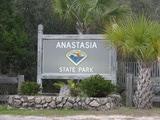SA AnastasiaSP