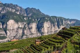 I festival viticoli in Italia a ottobre