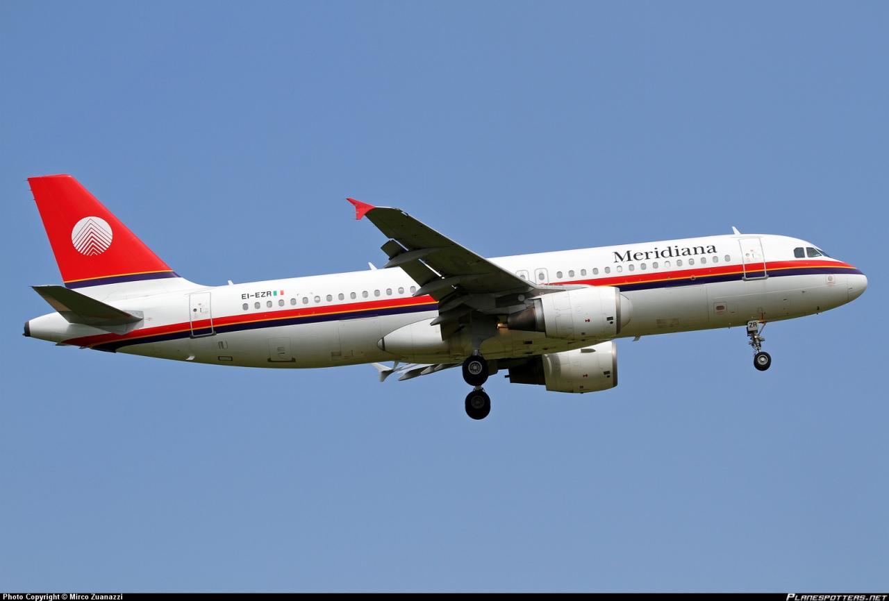 Quanto costa biglietto aereo cane meridiana - Easyjet cosa si puo portare in aereo ...