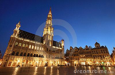 town hall bruxelles belgium night shot 14498719