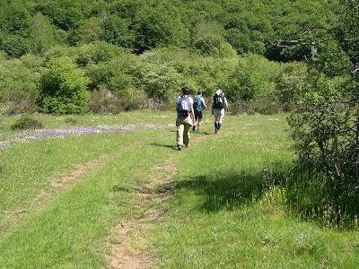 Ecoturismo per bambini, passeggiate nel Parco Nazionale della Sila