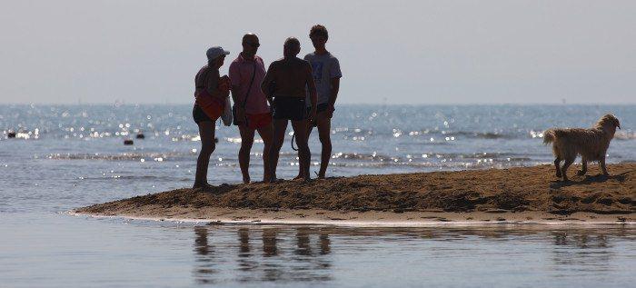 showreel spiagge per cani lido di fido