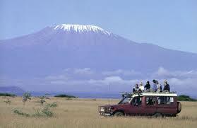Quanto costa un safari in Kenya?