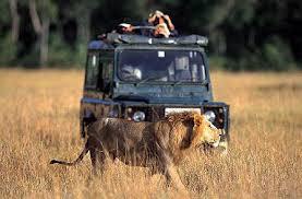 Quanto costa un safari al Masai Mara?