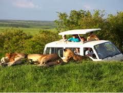 Quanto costa un safari a Malindi