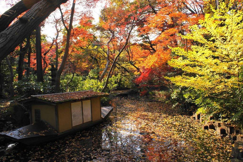 Arrivare a Gardens Nezu Museum Tokyo