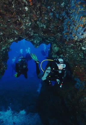 Dove fare Diving Ventotene