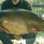 Dove fare carp fishing a Mantova