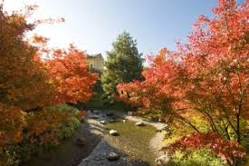 La magia del foliage nei Giardini di Castel Trauttmansdorff a Merano