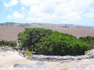 Tour guidato Caverne Patate a Rodrigues Island