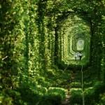 Come visitare il Tunnel dell'Amore in Ucraina