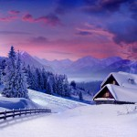 7 buone ragioni per visitare l'Alaska in inverno