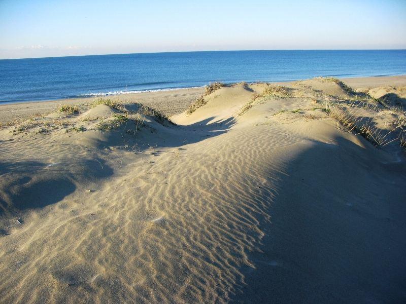 dune capocotta