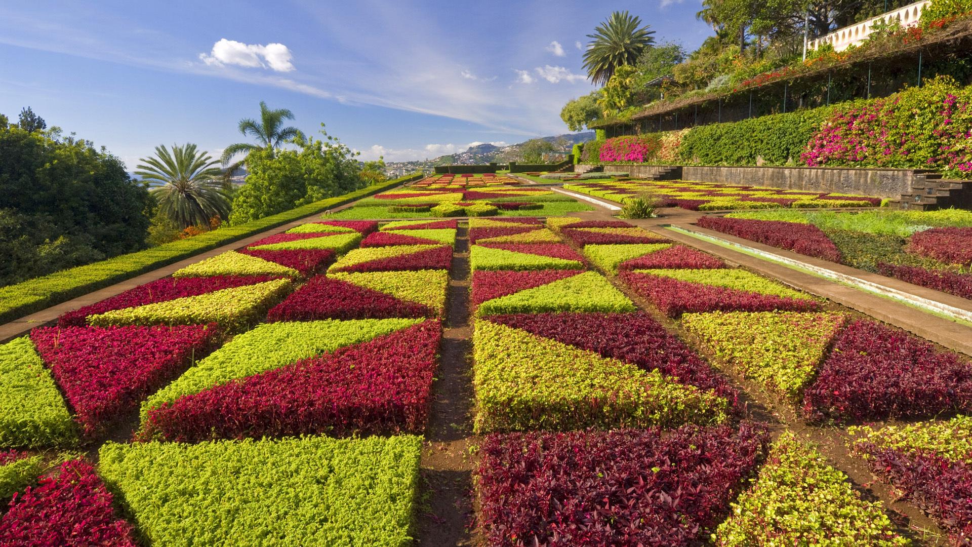 formal gardens madeira potugal