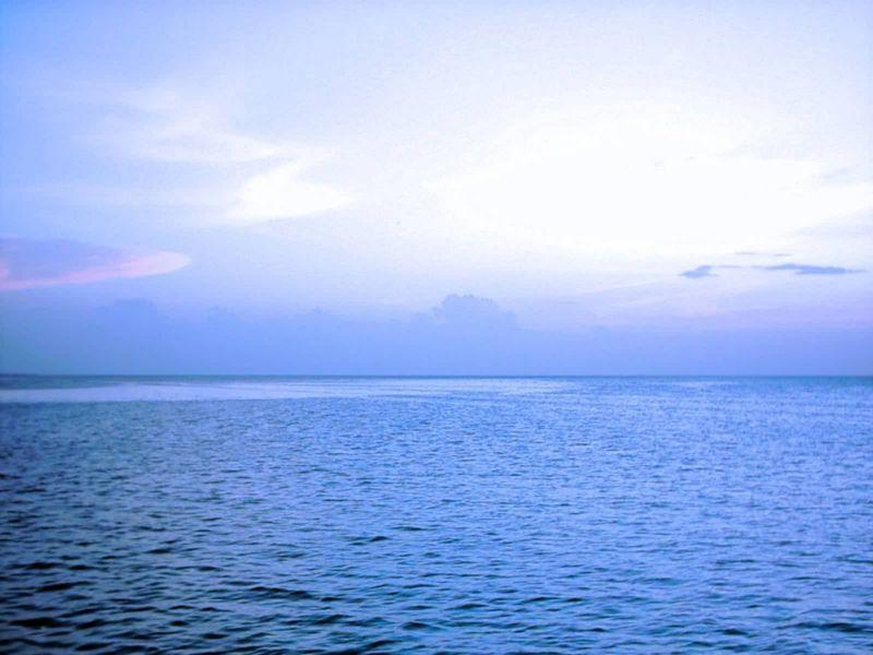 Mar campechano