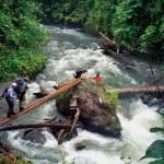 019412 dtnews kokoda trail1