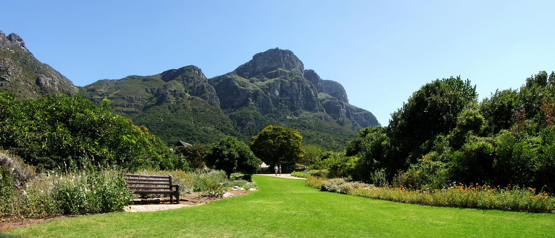 Come arrivare ai Giardini Botanici Nazionali Kirstenbosch di Cape Town
