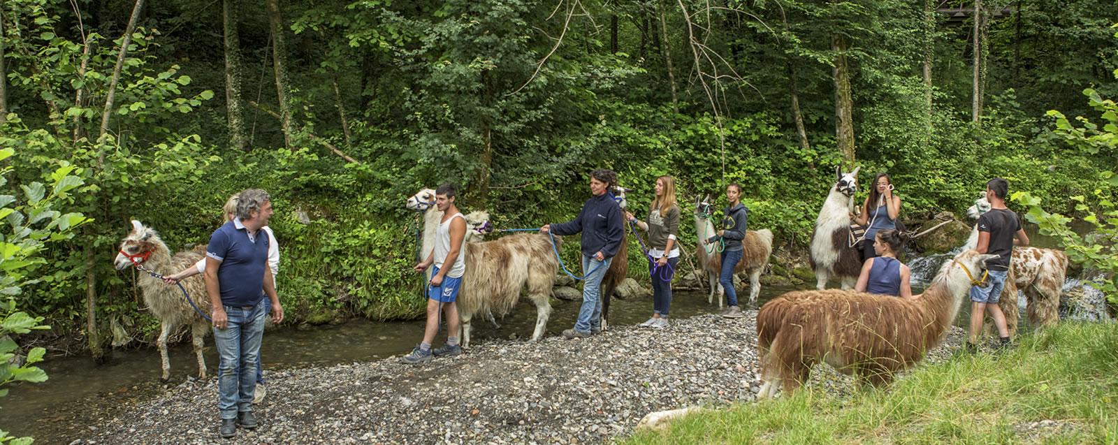 Vacanze in famiglia escursione in montagna con lama Valsecca