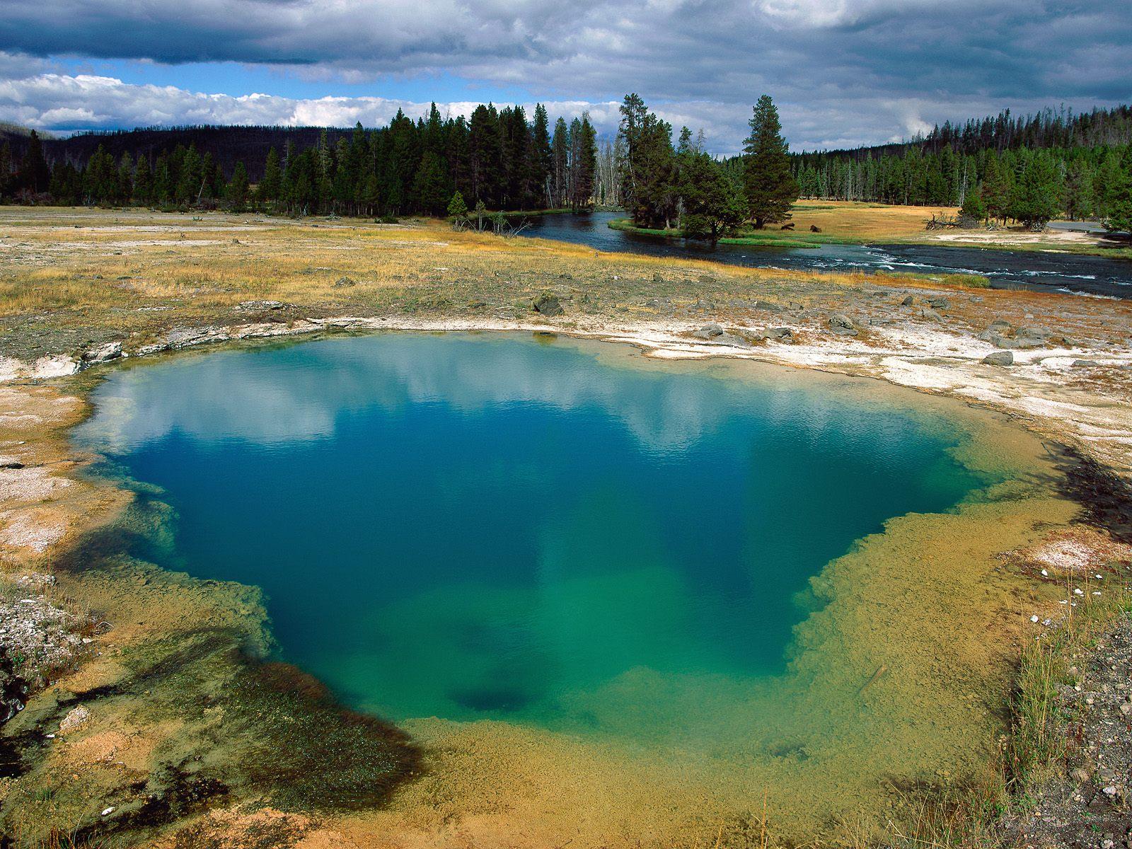 Tour parco di Yellowstone