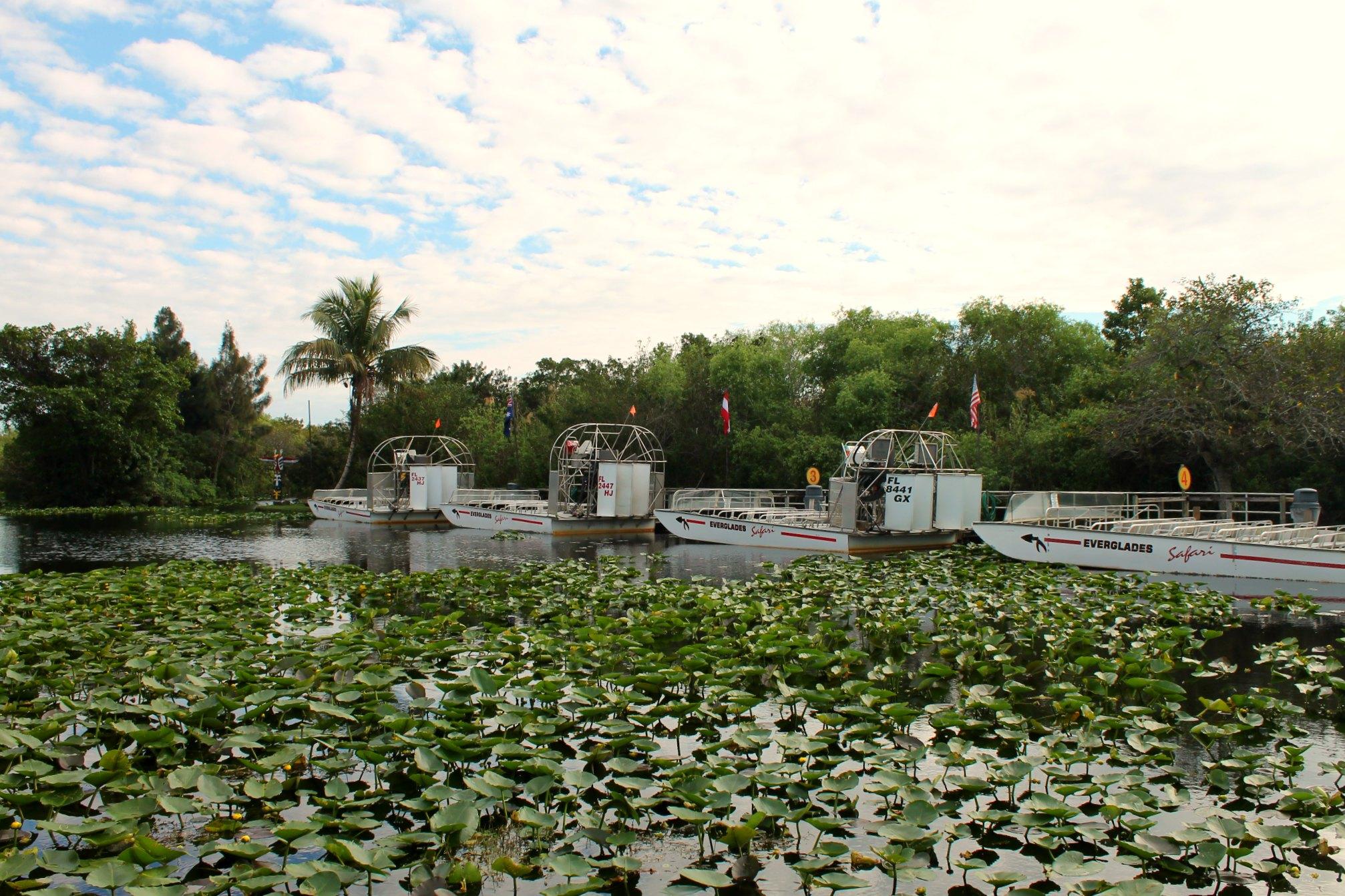Everglades pensieriinviaggio4