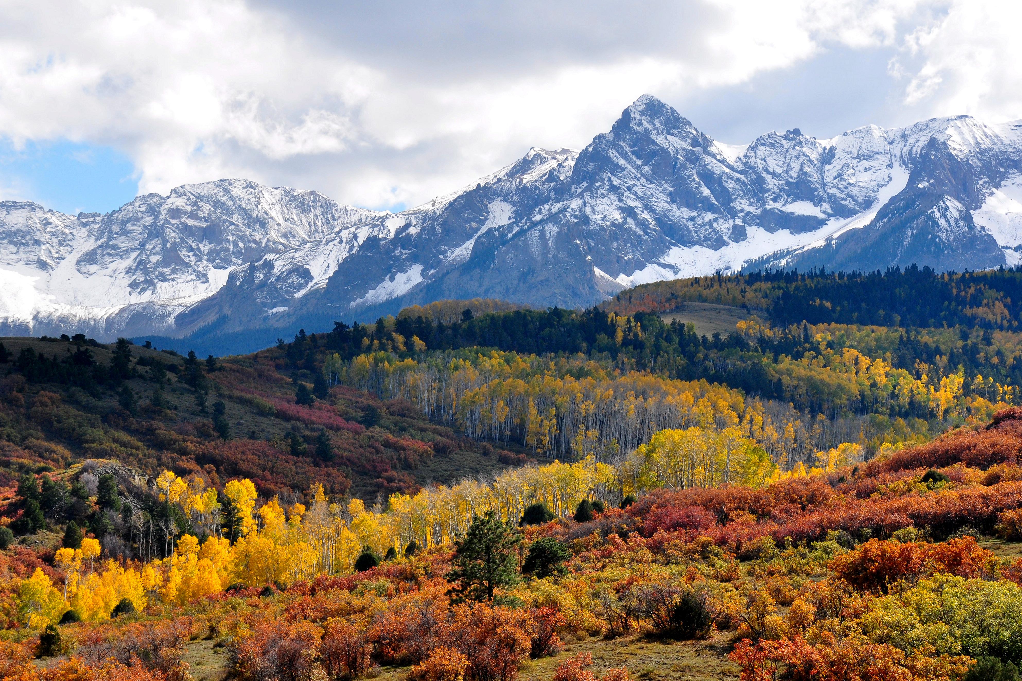 Fall colors near Ridgway Colorado