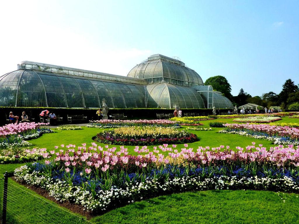 Come arrivare al giardino botanico di edimburgo viaggiamo for Giardino botanico milano