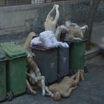 google street view ecco le immagini pi terrificant 2