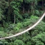 il ponte sospeso di sangam in india