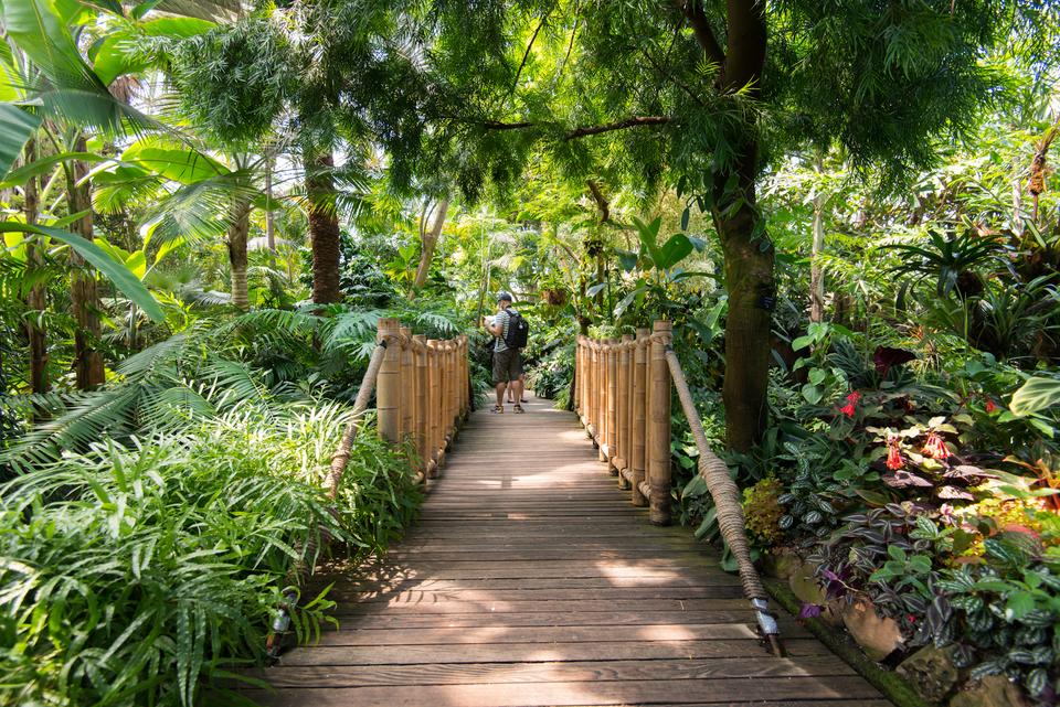 Quando visitare Bloedel Floral Conservatory