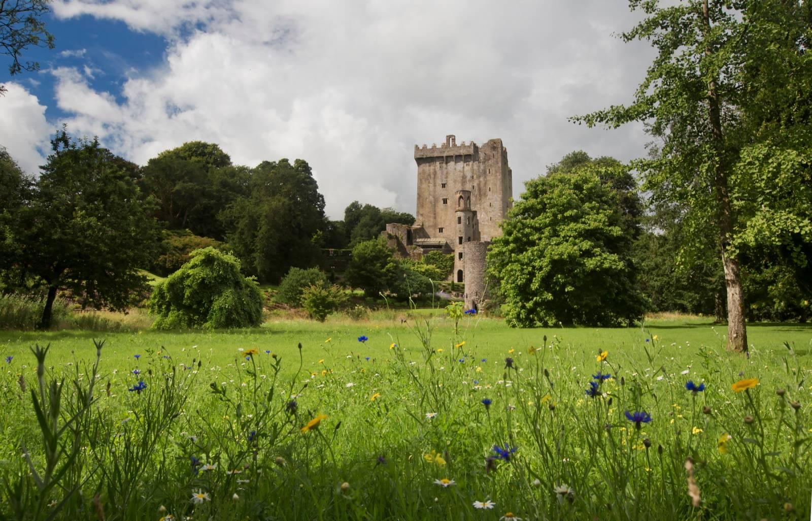 Itinerario castelli d'Irlanda più famosi