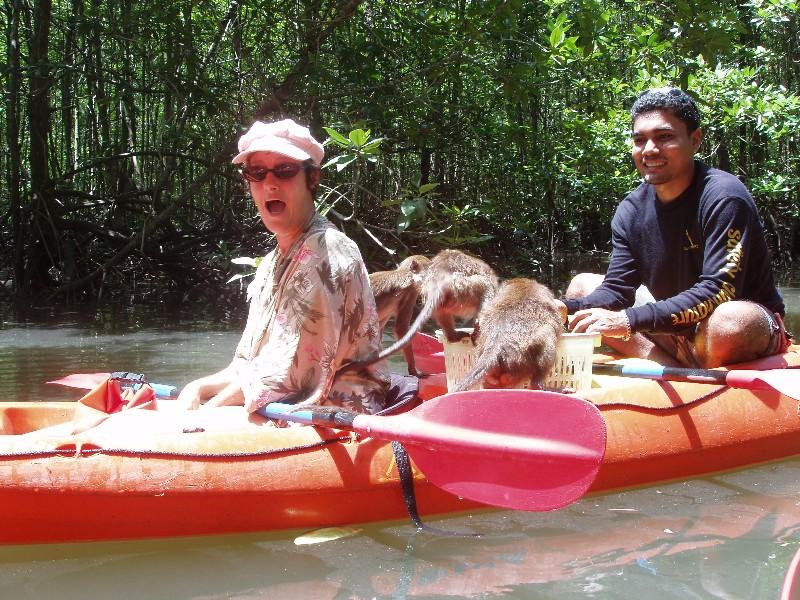 new kayak surprise