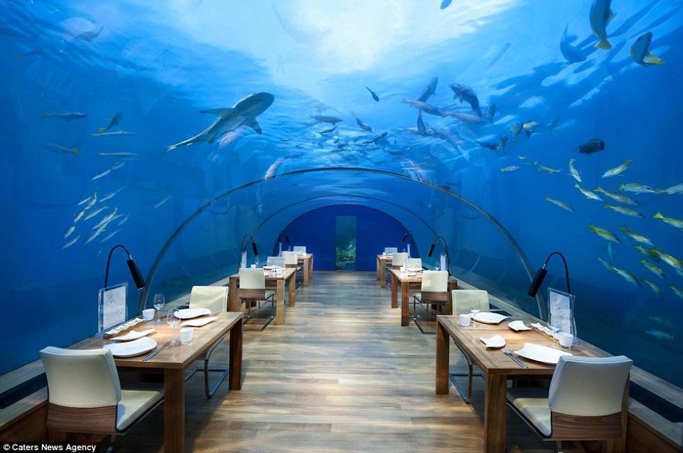 ristorante conrad maldives 327311