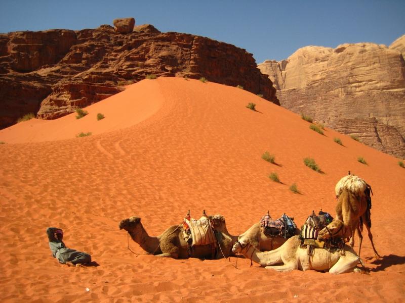 Qual è il periodo migliore per visitare la Giordania