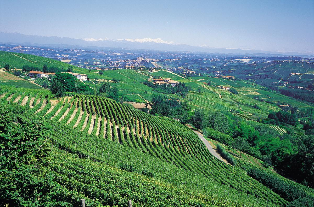 Idee soggiorno enogastronomico nel Monferrato