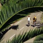 Prezzo noleggio bici Sanremo