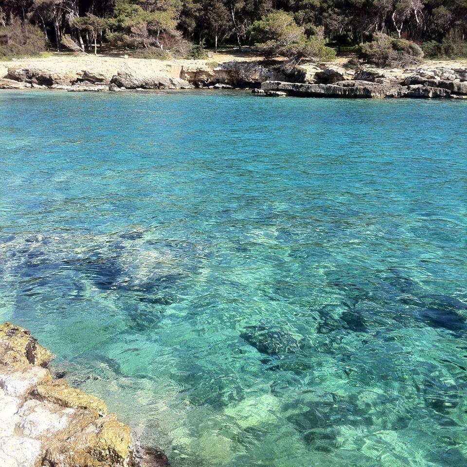 Come raggiungere Porto Selvaggio a Nardò, Puglia