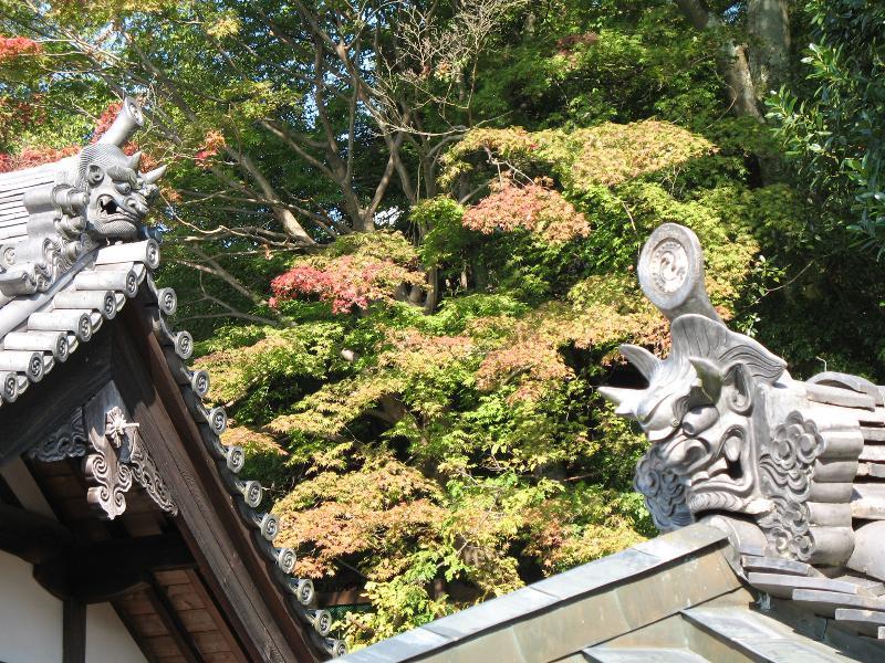 5 luoghi da vedere assolutamente in autunno