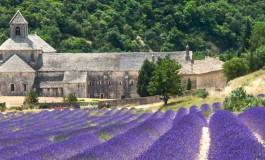 Itinerario cicloturistico Provenza Camargue Luberon