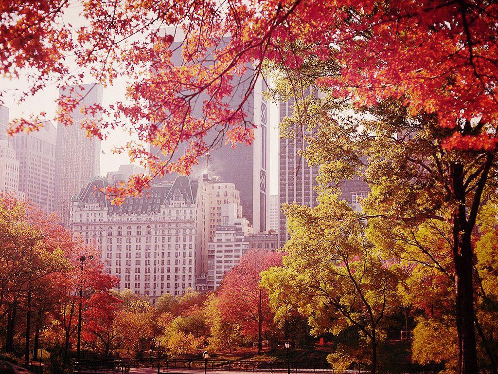 Cinque città da visitare in autunno