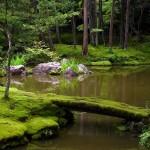 I 10 giardini zen più belli del Giappone