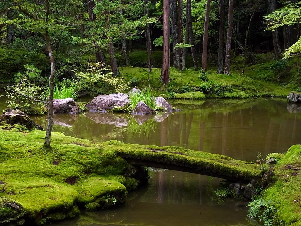I 10 giardini zen pi belli del giappone viaggiamo - Significato giardino zen ...