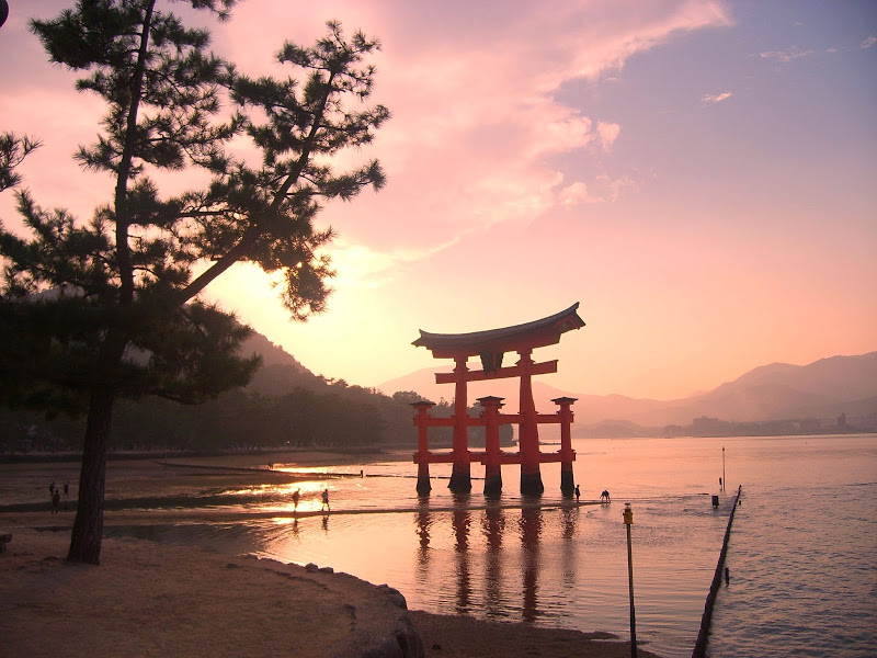 Cinque cose da visitare a Miyajima in Giappone