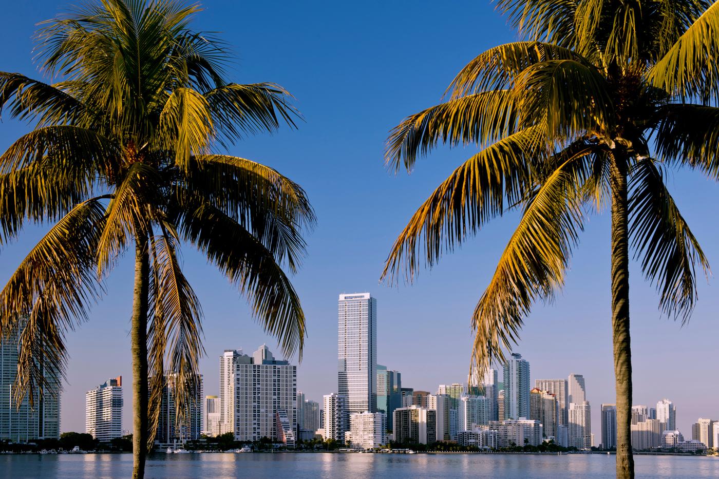 Che temperature Miami a dicembre