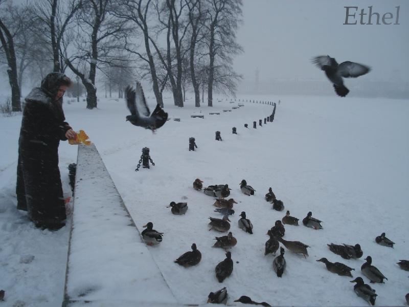 10 viaggi economici in inverno